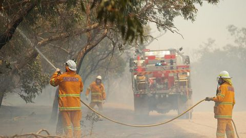 Bushfire Plans of Management, sometimes called Bushfire Risk Management Plans or Bushfire Management Plans